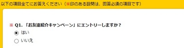 ハピタス 友達紹介エントリー画面.jpg